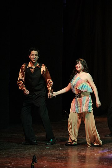 Disco dancers typically wore loose slacks for men and flowing dresses for women, which enabled ease of movement on the dance floor. 04232012dae jpg semana de la cultura162.JPG
