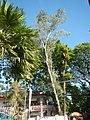 1226Roads Payatas Bagong Silangan Quezon City Landmarks 06.jpg