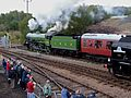 1306 Mayflower at Barrowhill (3).jpg