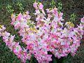 1461929 Silk-flowers 620.jpg