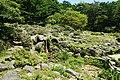 170811 Rokko Alpine Botanical Garden Kobe Japan05n.jpg