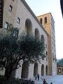 192 Monestir de Montserrat, olivera del claustre gòtic i façana del monestir.JPG
