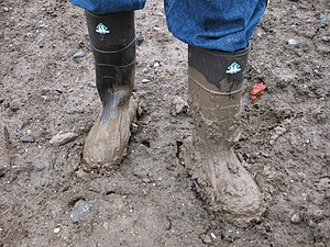 Mud - A pair of muddy boots