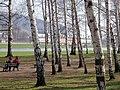 20040402140DR Dresden-Pillnitz Schloß Pillnitz Wasserpalais.jpg