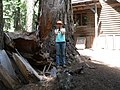 2007. Forest Pathologist Kristen Chadwick with tree failure. Lake of the Woods. Fremont-Winema National Forest, Oregon. (39590308332).jpg