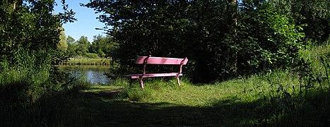20090623 Stadpark Groningen NL 3.jpg