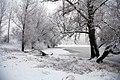 2010-01-03-schnee-im-nebel-by-RalfR-37.jpg