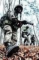 2013.4.8 육군1군단 특공연대 탐색격멸 작전 Search and Destroy Training of Republic of Korea Army 1st Corps (8635839361).jpg