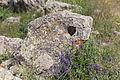 2014 Prowincja Sjunik, Zorac Karer, Prehistoryczny kompleks megalityczny (044).jpg