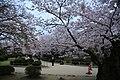 20160403 Himeji-Castle 3443 (26220674184).jpg