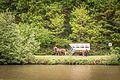 20160515 Pferdewagen am Saarufer IMG 3281 by sebaso.jpg