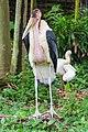 2016 Singapur, Jurong Bird Park (113).jpg