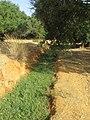 2017-10-12 Small stream, Val da Azinheira, Albufeira (1).JPG