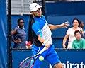 2017 US Open Tennis - Qualifying Rounds - Radu Albot (MDA) (27) def. Frank Dancevic (CAN) (36980330262).jpg