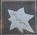 2018-07-18 Sterne der Satire - Walk of Fame des Kabaretts Nr 80 Heinrich Heine-1108.jpg