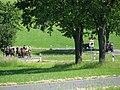 21te Rammenauer Schlossrundfahrt der Pferdegespanne (005).jpg