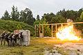 22nd MEU BLT increases explosive capabilities 130828-M-MX805-278.jpg