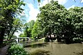 3981 Bunnik, Netherlands - panoramio (84).jpg