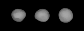 8Flora (Lightcurve Inversion).png
