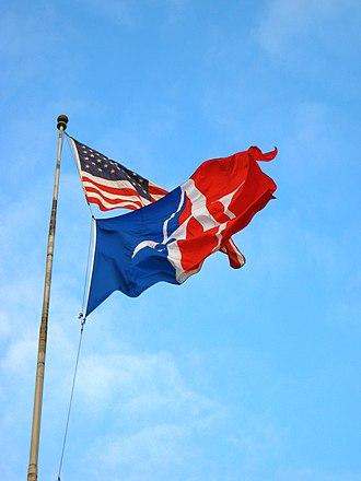 American University - The American University flag