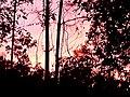 A Sunset To Remeber.jpg