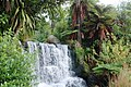 A Waterfall in Rainbow Spring Rotorua NZ - panoramio.jpg