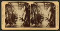 A half-mile of pork, Armour's great packing house, Chicago, Ill, from Robert N. Dennis collection of stereoscopic views 5.png