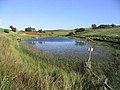 A private fishing pond near Southfield - geograph.org.uk - 256700.jpg