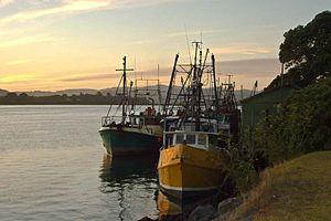 Tauranga - Tauranga harbour.