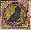 Aberdeen Bestiary - Owl.JPG