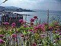 Aberystwyth - panoramio (58).jpg