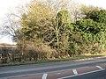 Abutment of dismantled railway bridge - geograph.org.uk - 1700043.jpg