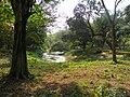 Acharya Jagadish Chandra Bose Indian Botanic Garden - Howrah 2011-03-20 1956.JPG