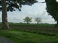 Across the fields. - geograph.org.uk - 6601.jpg