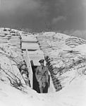Admiral Chester W. Nimitz steps out of a bunker on Midway Atoll in 1942.jpg