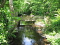 Afon Cegin below Glasinfryn Bridge - geograph.org.uk - 813296.jpg