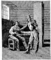 Aimard - Les Chasseurs d'abeilles, 1893, illust page 173.png