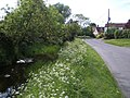 Alconbury Brook at Alconbury Weston looking Westwards - geograph.org.uk - 461578.jpg