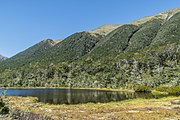 Alpine tarn on Lewis Pass 10.jpg
