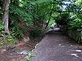 Altbachtal 5.jpg