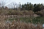 Alum Creek State Park Trail 1.jpg