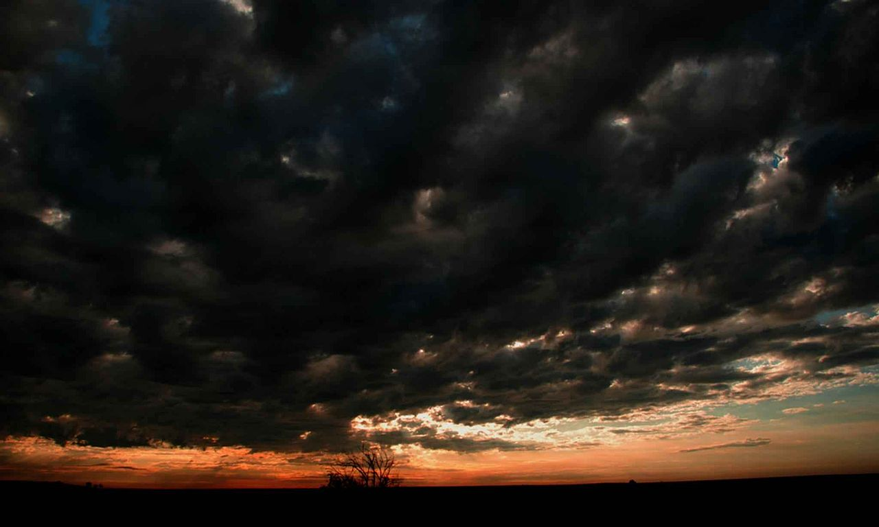 Ebony sky black-6648
