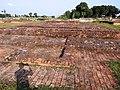 Ancient Site of Tola Ganwaria (5).jpg