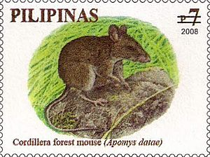 Luzon montane forest mouse - Image: Apomys datae 2008 stamp of the Philippines