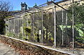 Arboretum Zürich - Voliere 2015-02-26 12-06-24.JPG