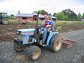 Archie Rides Tractor.jpg