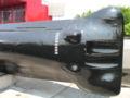 Argonaute FS S636 p1040823.jpg
