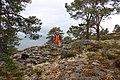 Arkeologisk utgraving på Amborneset, Leksvik – Gravrøys (3602604017).jpg