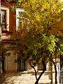 Astrakhan house 14 (4140598753).jpg