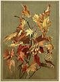 Autumn Leaves, No. 2 (Maple) (Boston Public Library).jpg